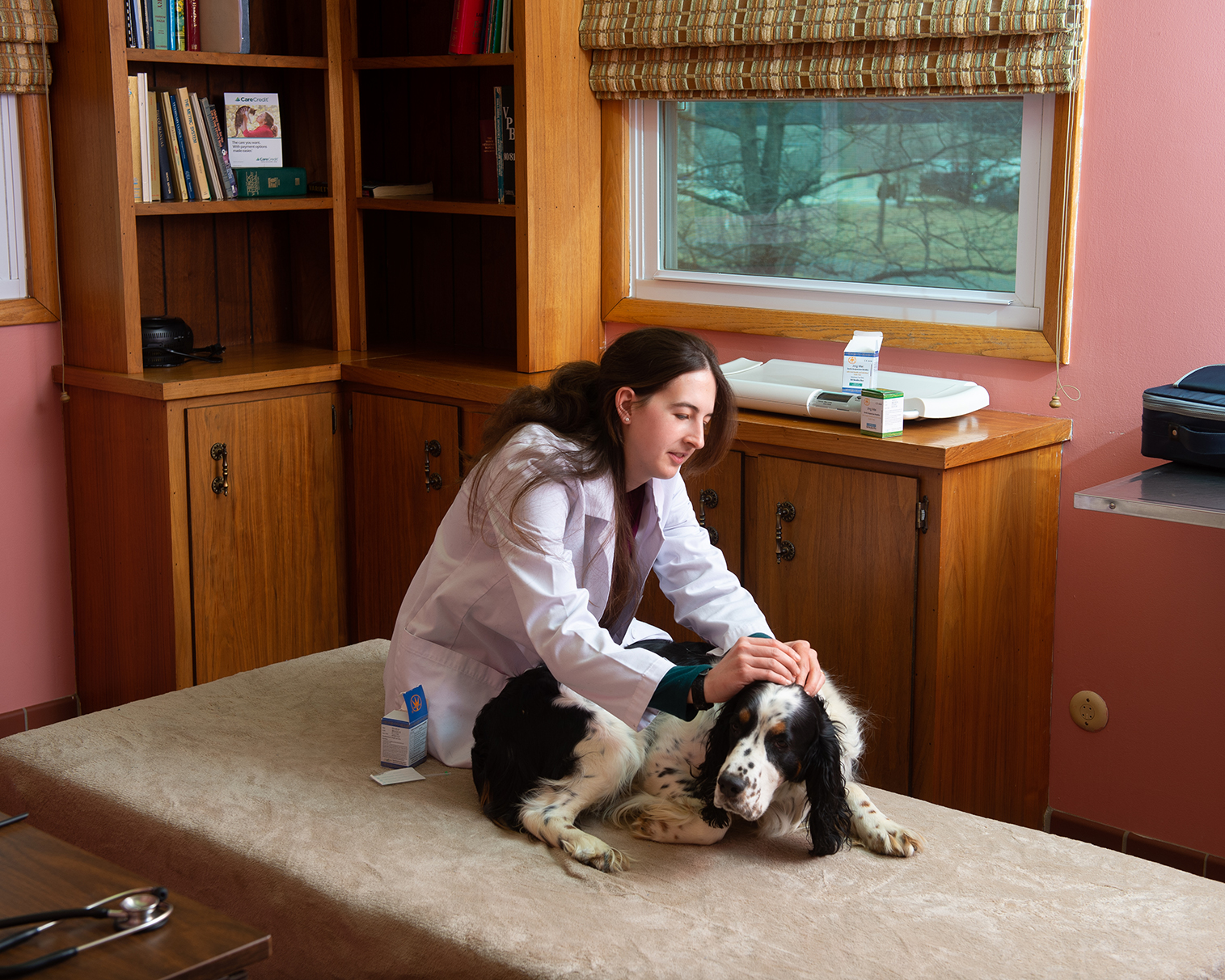 Dr Nicole Kelleher putting flea and tick medicine on a dogs neck