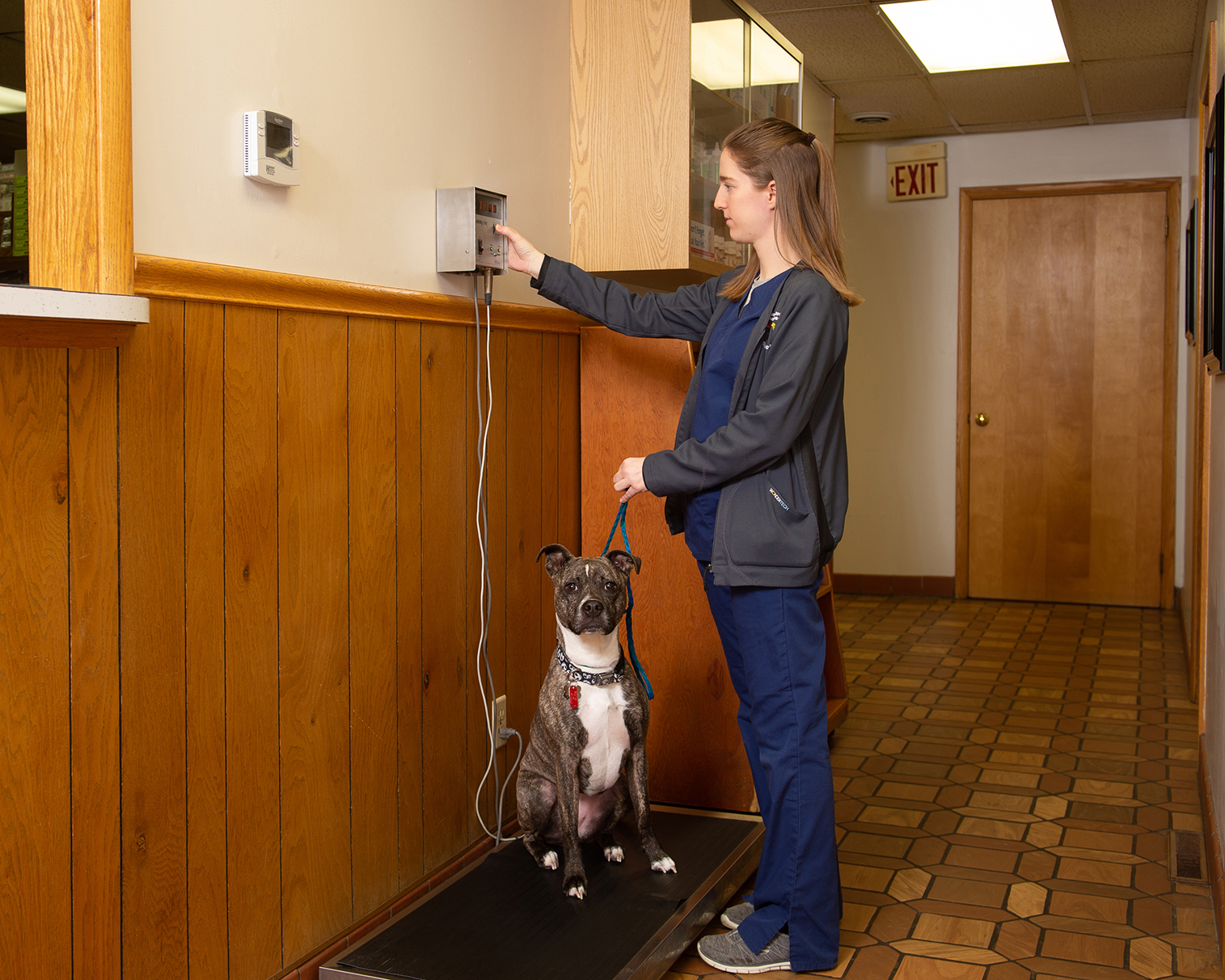 Stephanie Schott weighing a dog on a scale